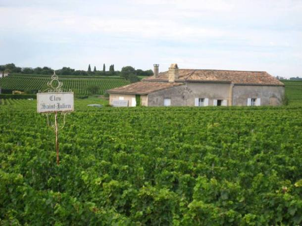 Vineyards in Saint-Émilion