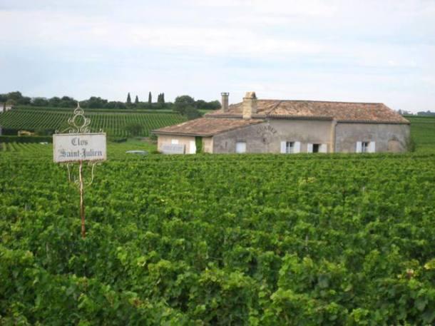 Vineyards in Saint-Émilion